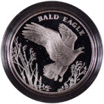 2003 United States Mint National Wildlife Refuge Centennial Medal-Bald Eagle Proof - obverse