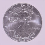 Close up 2003 Silver Eagle Dollar MS69 NGC for sale 1799858-234 obverse