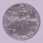 Close up 2007 W Silver Eagle MS69 Early Release NGC for sale 3084705-082 obverse