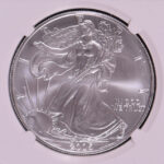 close-up-2005-silver-eagle-dollar-ms69-ngc-for-sale-3613288-019-obverse