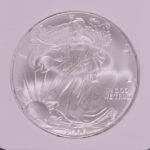close-up-2006-silver-eagle-dollar-ms69-ngc-for-sale-1990891-094-obverse