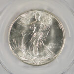 Close up 1946 S Walking Liberty Dollar MS66 PCGS 6629.66-81603036 for sale obverse