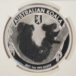Close up Australia 2011 P $1 Koala - Berlin Bear MS69 NGC 3686448-051 for sale obverse